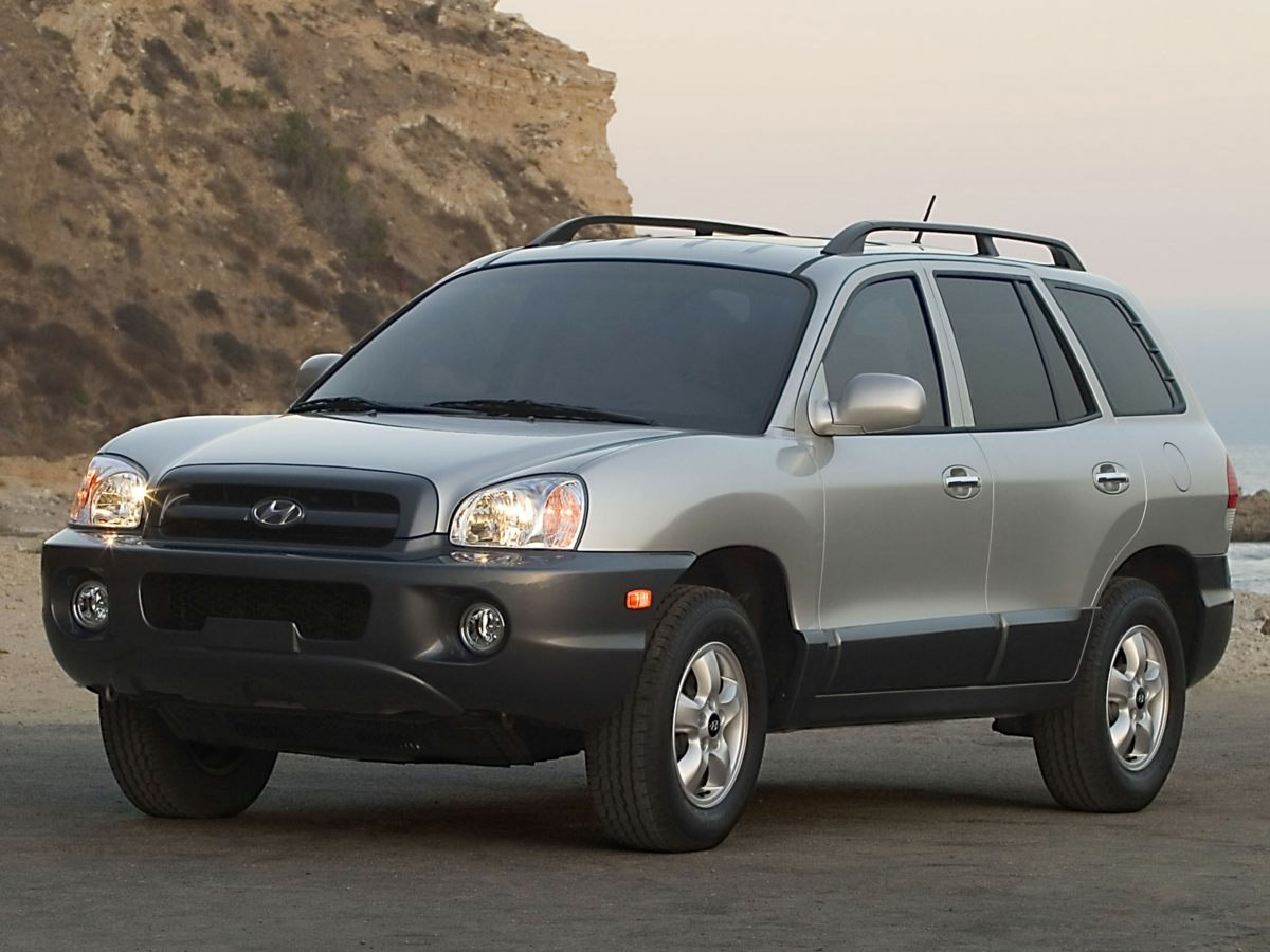 2005 Hyundai Santa Fe GLS Gray Here at WP HYUNDAI we try to make the purchase process as easy an