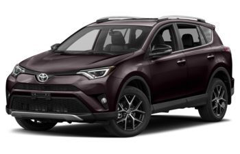2017 Toyota RAV4 - Black Currant Metallic