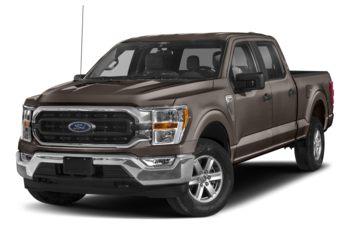 2021 Ford F-150 - Stone Grey Metallic