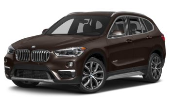 2017 BMW X1 - Sparkling Brown Metallic