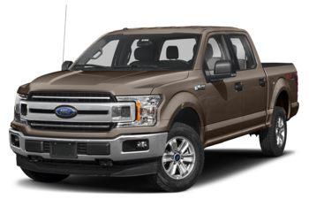 2019 Ford F-150 - Stone Grey