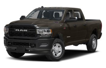 2021 RAM 2500 - Walnut Brown Metallic