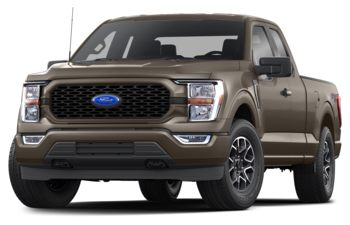 2021 Ford F-150 - Stone Grey Metallic