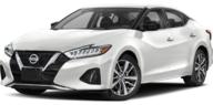 2019 Nissan Maxima Platinum Greenvale NY