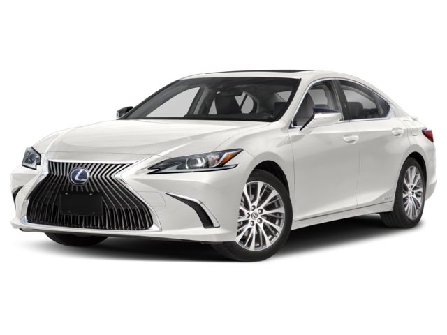 2019 Lexus ES in Charleston